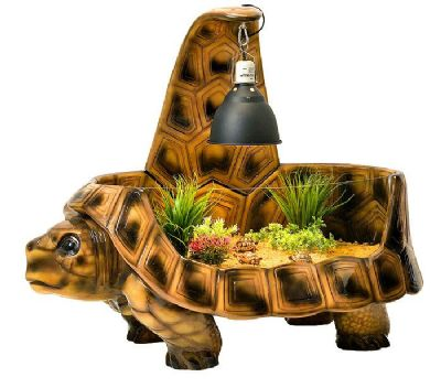 THE VIVIDARIUM TORTOISE HOME